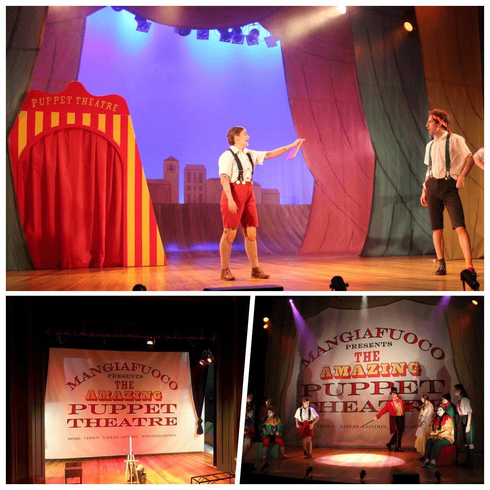 NEDLAY-COLLAGE Theatre Stage Back Drop Banner